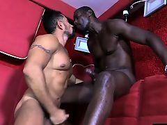 blowjobs cumshot facials gays interracial
