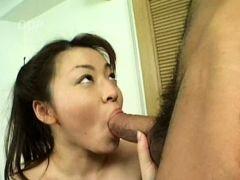 asian exotic