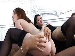 matador fucking honeys penis