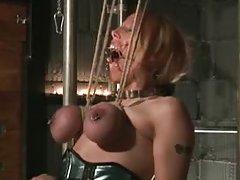 babe bdsm blonde bondage fetish
