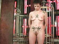 amateur babe bdsm bondage fetish