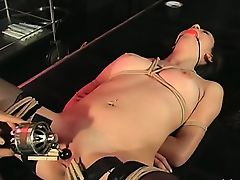 toys brunette bdsm babes fetish
