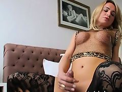 black shemales tranny shemales blondes