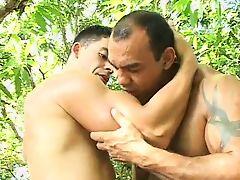 gays brazilian