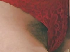 big tits bush