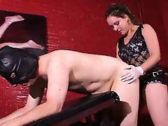 bbw bondage femdom strapon fucking