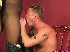 blondes blowjobs gays interracial masturbate