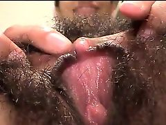 hairy babes bush exotic